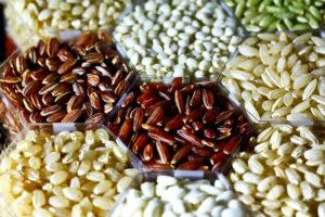 800px-Rice_grains_(IRRI)